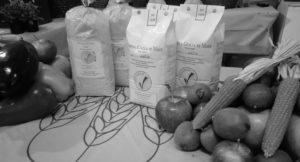 la farina di mais e il fioretto di mais Vigaxio sono il simbolo della nostra nascita e del nostro progetto