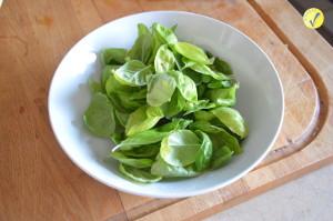 Foglie di basilico per fare il pesto per la vostra pasta fredda
