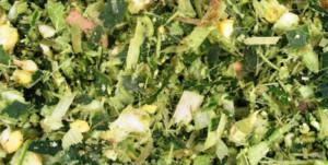 Il silomais in razione è un classico degli ambienti dove è possibile produrre mais